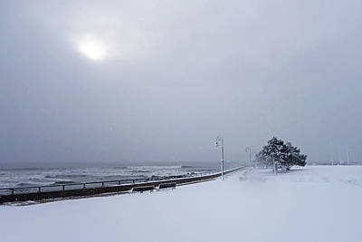 Photograph - Snow On The Lynn Waterfront Red Rock Park Lynn Ma by Toby McGuire
