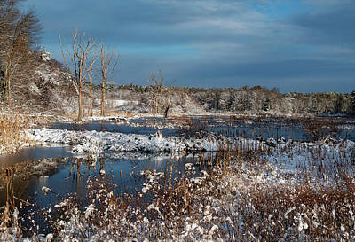 Photograph - Snow On The Marsh by Betty Denise
