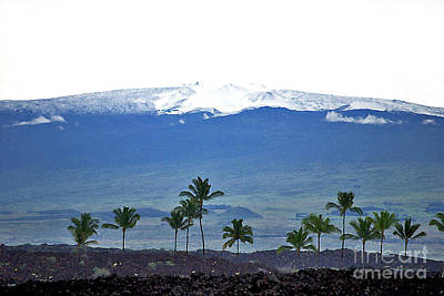 Mauna Kea Photograph - Snow On The Mountain by Bette Phelan