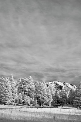 Photograph - Snow On The Mountain In Flagstaff by Jon Glaser