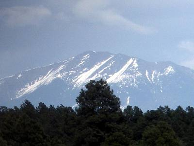 Art Print featuring the photograph Snow On The Mountain by Jeanette Oberholtzer