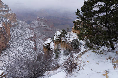 Photograph - Snow On The South Rim by Dennis Reagan