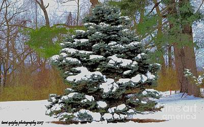 Photograph - Snow Painted Boughs by Tami Quigley