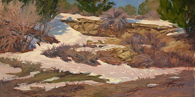 Painting - Snow Patch by Jane Thorpe