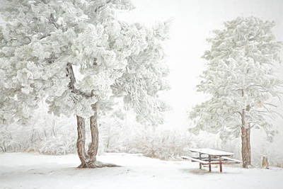 Photograph - Snow Picnic by Kristal Kraft