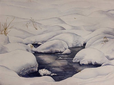 Snow Pool Art Print by Debbie Homewood