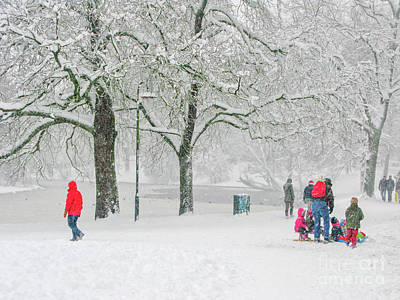 Photograph - Snow Scene In Park by Patricia Hofmeester