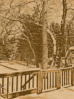 Photograph - Snow Scene In Sepia by Pamela Hyde Wilson