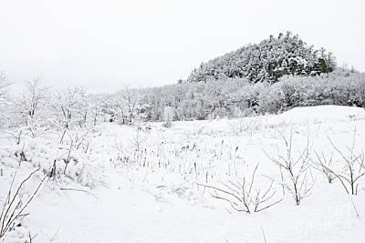 Snow Scene Art Print by Larry Ricker