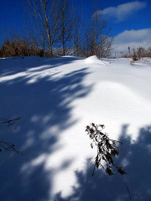 Photograph - Snow Shadow 11 by Douglas Pike