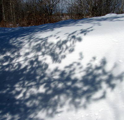 Photograph - Snow Shadow 5 by Douglas Pike