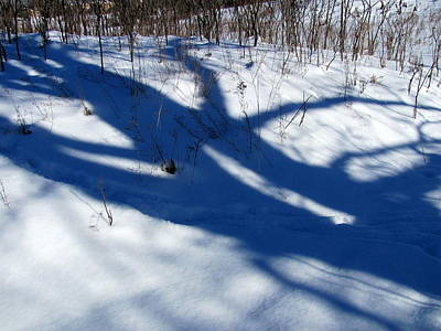 Photograph - Snow Shadows 10 by Douglas Pike