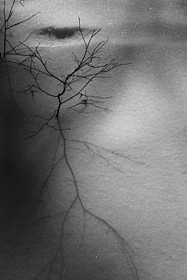 Photograph - Snow Shadows 2018 6 Bw by Mary Bedy