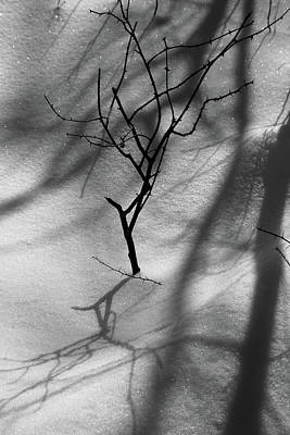 Photograph - Snow Shadows 2018 Bw by Mary Bedy