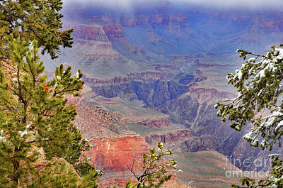 Photograph - Snow Showers by Debby Pueschel