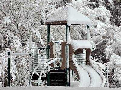 Garden Fruits - Snow Slide by Al Powell Photography USA