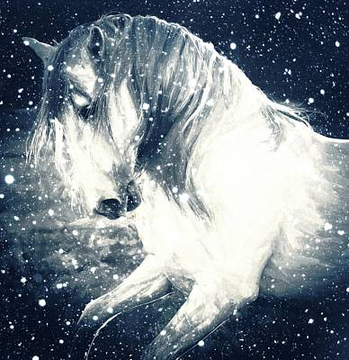 Photograph - Snow Stallion by Alice Gipson