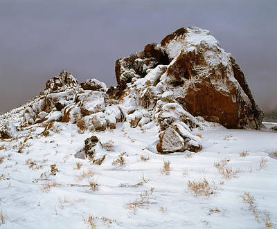 Photograph - Snow Stones by Paul Breitkreuz