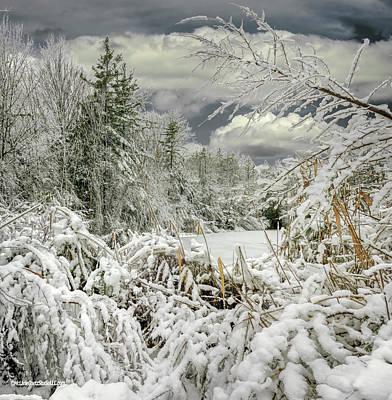 Photograph - Snow Storm 2018 by LeeAnn McLaneGoetz McLaneGoetzStudioLLCcom