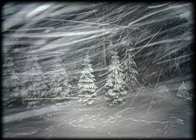 Photograph - Snow Storm Snow Trails by LeeAnn McLaneGoetz McLaneGoetzStudioLLCcom