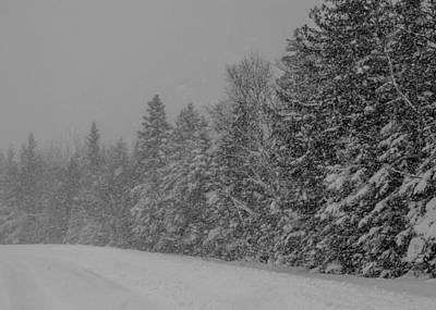 Photograph - Snow Storm by Stephanie Maatta Smith