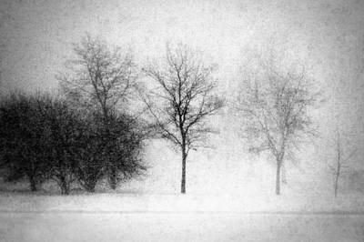 Nature Abstracts Photograph - Snow Storm by Todd Klassy