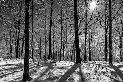 Photograph - Snow, Sun And Shadow by Chris Buff