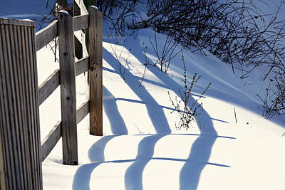 Photograph - Snow, Sun And Shadows by Tatiana Travelways