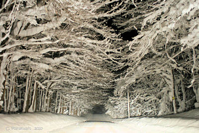 Snow Tunnel At Night Art Print by Carolyn Postelwait