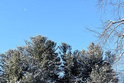 Photograph - Snow Under A Morning Moon 1 by Nina Kindred
