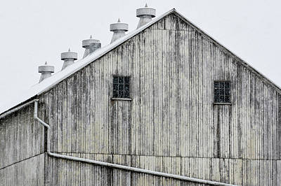 Photograph - Snow White Barn by Tana Reiff