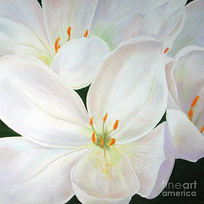 Pastel - Snow White by Lucinda  Hansen