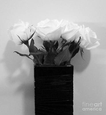 Snow White Roses Art Print by Marsha Heiken
