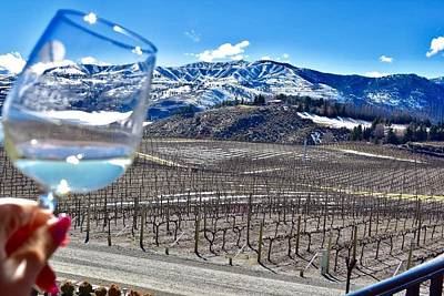 Photograph - Snow Wine by Vanessa Palomino