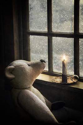 Photograph -  Snow Wonder by Robin-Lee Vieira