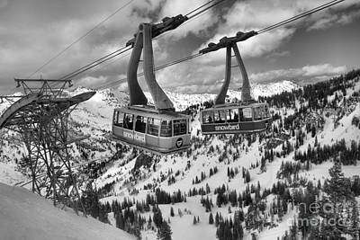 Photograph - Snowbird Hidden Peak Trams Black And White by Adam Jewell
