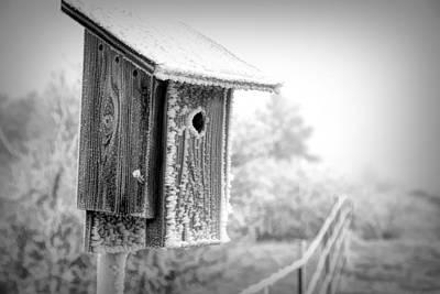 Photograph - Snowbird House by Kristal Kraft