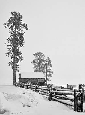Photograph - Snowbound by Alan Toepfer
