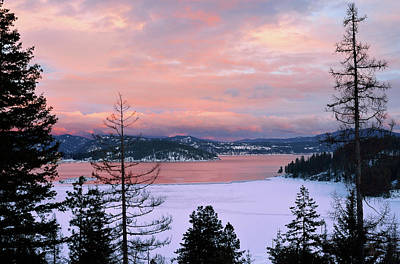 Photograph - Snowbound Cougar Bay by Vic Harris