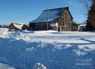 Photograph - Snowbound by Kathie Chicoine
