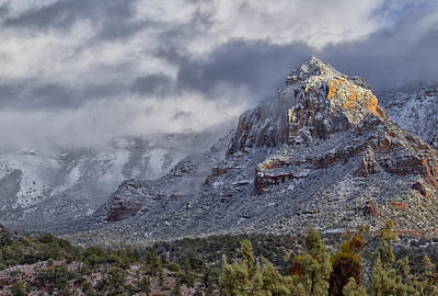 Photograph - Snowbreak by Tom Kelly