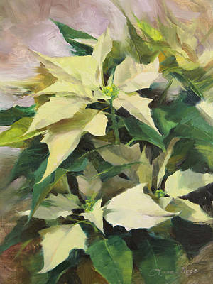 Floral Still Life Painting - Snowcap Poinsettia by Anna Rose Bain