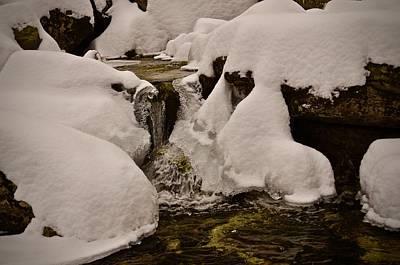 Photograph - Snowcone Stream by Cornelia DeDona