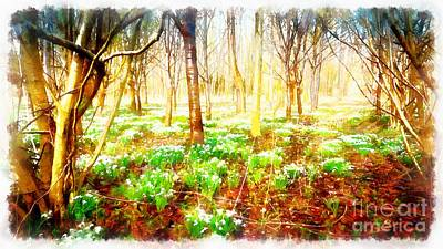 Photograph - Snowdrops In The Forest by Mick Flynn