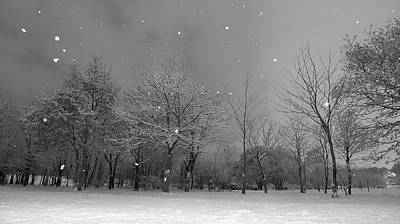 Bare Trees Photograph - Snowfall At Night by Mark Watson (kalimistuk)