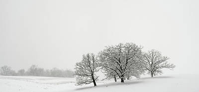Snowfall Jo Davies County Illinois Art Print by Steve Gadomski