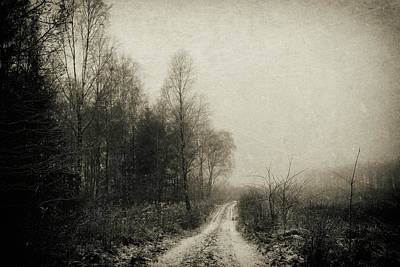 Photograph - Snowfalls Gone By by Karen Stahlros