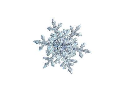 Photograph - Snowflake 2018-02-21 N1 White by Alexey Kljatov