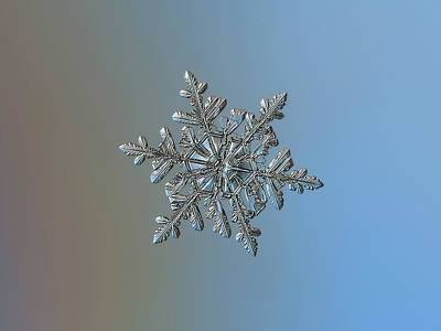 Photograph - Snowflake 2018-02-21 N2 by Alexey Kljatov