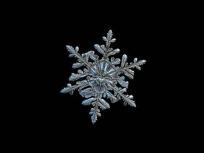 Photograph - Snowflake 2018-02-21 N2 Black by Alexey Kljatov